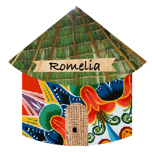 Introducing Costa Rica Romelia from the Palmichal Region